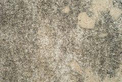 Rocznik lub grungy biały tło naturalny cement lub kamienna stara tekstura Fotografia Royalty Free