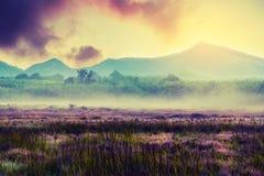 Rocznik natury krajobrazowy tło Zdjęcie Royalty Free