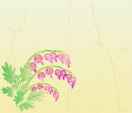 Rocznik pękająca karta z ręki rysować menchiami kwitnie Zdjęcie Stock