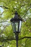 Rocznik parkowa lampa Obraz Royalty Free