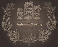 Rocznik pikantność zgrzyta kredowej deski naturę i kulinarnych ziele ilustracja wektor