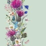Rocznik pionowo ziołowa bezszwowa granica z Kwitnącym Łąkowym Flo Zdjęcia Royalty Free