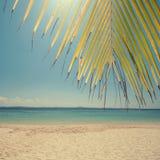 Rocznik plaża Obraz Royalty Free