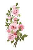 Rocznik róż różowa gałąź. royalty ilustracja