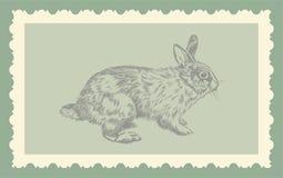 Rocznik ręki rysunkowy królik   Zdjęcia Royalty Free
