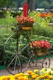 rocznik rower fotografia royalty free