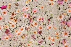 Rocznik tekstura z Różowymi lnów kwiatami Fotografia Stock