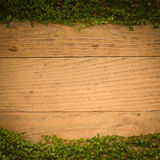 Rocznik tekstury drewniany podłogowy tło z zielonymi liśćmi Fotografia Stock