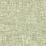 Rocznik tkaniny tekstura royalty ilustracja