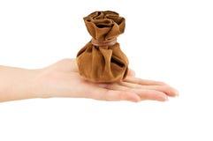 Rocznik torby pieniądze na ręce Fotografia Royalty Free