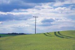 Rocznik władzy słup w pszenicznym polu Obraz Stock