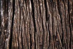 Rocznik wietrzejący drewniany tło lub tekstura Obraz Royalty Free