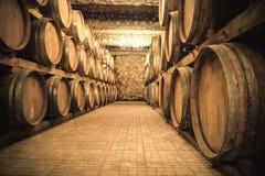 Rocznik wytwórnii win loch z wino baryłkami Obraz Stock
