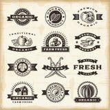 Rocznika żniwa organicznie znaczki ustawiający Zdjęcie Royalty Free