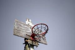 Rocznika backboard Fotografia Stock