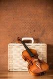 Rocznika bagaż i skrzypce Obraz Stock