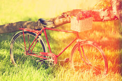 Rocznika bicykl fotografia royalty free