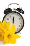 Rocznika zegar, żółci daffodils, wiosna, dst. Zdjęcia Royalty Free