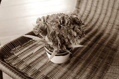 Rocznika bukieta stylowy kwiat Obrazy Stock