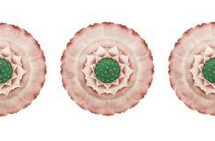 Rocznika chiński wzór Royalty Ilustracja