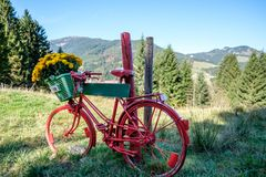 Rocznika czerwony rower z kwiatami i znak przed góra krajobrazem Obrazy Stock