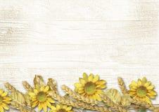Rocznika drewniany tło z złotą jesieni granicą Fotografia Royalty Free