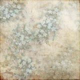 Rocznika Grunge tła miękkiej części zieleni Błękitny biel 143 Obraz Stock