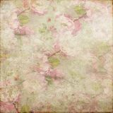 Rocznika Grunge tła miękkiej części zieleni menchii biel 146 Obraz Royalty Free
