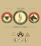 Rocznika infographics żniwo i uprawiać ziemię royalty ilustracja