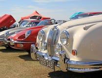Rocznika jaguara samochodu światła Fotografia Royalty Free