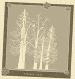 Rocznika kartka z pozdrowieniami rośliny skład Zdjęcie Royalty Free