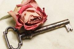 Rocznika klucz Fotografia Royalty Free