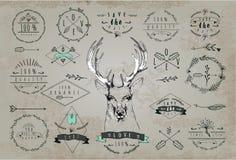 Rocznika Kochany logo Projekt dla T koszula Obraz Stock