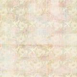 Rocznika kolażu Grungy Antykwarski tło z kwiatami i efemeryda, Fotografia Royalty Free