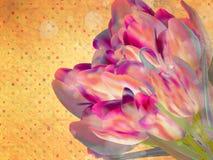 Rocznika kwiecisty ramowy tło. EPS 10 Fotografia Royalty Free