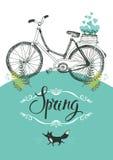 Rocznika lis i bicykl. Winieta i kaligrafia Fotografia Stock