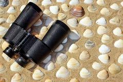Rocznika lornetki, kompas i Seashells, Morski tło Zdjęcie Royalty Free