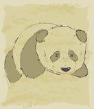 Rocznika nakreślenie śliczna panda royalty ilustracja