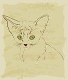 Rocznika nakreślenie śliczny kot ilustracja wektor