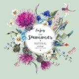 Rocznika Naturalny Ziołowy kartka z pozdrowieniami z Kwitnącym Łąkowym kwiatem Zdjęcie Royalty Free