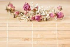 Rocznika obrazek, ładny miękki tło, mali kwiaty fotografia stock