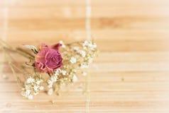 Rocznika obrazek, ładny miękki tło, mali kwiaty fotografia royalty free