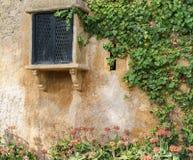 Rocznika okno na Starej Kamiennej ścianie z bluszczem Obrazy Stock