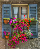 Rocznika okno z świeżymi kwiatami Fotografia Stock