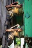 Rocznika połączenie między kolejowymi furgonami obrazy royalty free