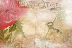 Rocznika pocztówkowy tło z ptakiem i kwiatem Obrazy Royalty Free