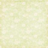 Rocznika podławej szyka zieleni różana tła tekstura Zdjęcia Royalty Free