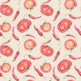 Rocznika pomidor i Chłodny wzór ilustracji