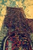 Rocznika spojrzenie z roślinność spadkiem na wierza Obrazy Stock