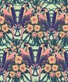 Rocznika stylowy bezszwowy wzór z ar papugami Obraz Stock